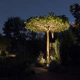 Boom verlichten led tuinspot