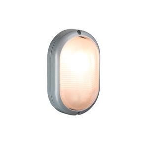 Bulleye LED buitenlamp zilver 230v